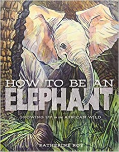 how-to-be-an-elephant